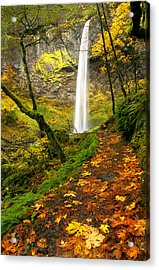Elowah Autumn Trail Acrylic Print by Mike  Dawson