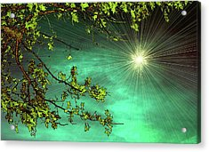 Emerald Sky Acrylic Print by Tom York Images