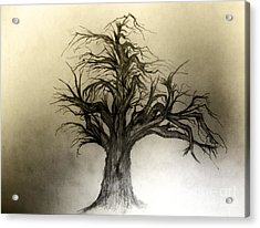 Enchanted Acrylic Print by John Krakora