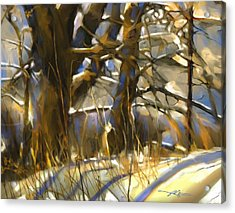 End Of A Winter's Day Acrylic Print by Bob Salo