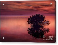 End Of Another Day Acrylic Print by Marvin Spates