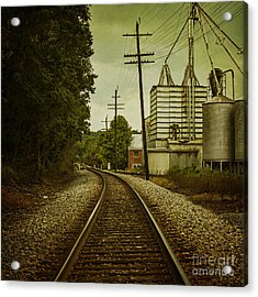 Endless Journey Acrylic Print by Andrew Paranavitana