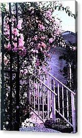 Endless Summer Acrylic Print by Susanne Van Hulst