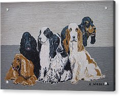 English Cocker Spaniel Family Acrylic Print by Antje Wieser