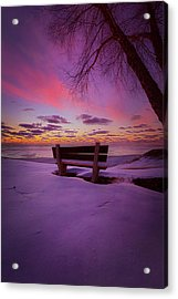 Enters The Unguarded Heart Acrylic Print by Phil Koch