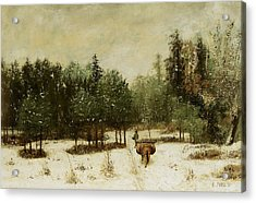 Entrance To The Forest In Winter Acrylic Print by Cherubino Pata