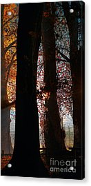 Escape Acrylic Print by Russ Brown