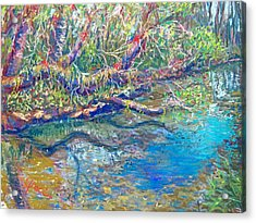Estero River West Acrylic Print by Laurie Paci