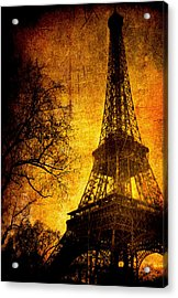 Esthetic Luster Acrylic Print by Andrew Paranavitana