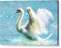 Ethereal Swan Acrylic Print by Georgiana Romanovna