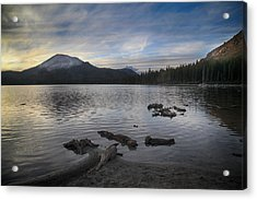 Even Though It's Been So Long Acrylic Print by Laurie Search