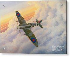 Evening Flight Acrylic Print by Michael Swanson