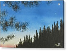 Evening Acrylic Print by Martin Bellmann