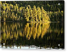 Evening Reflections On Alder Lake Acrylic Print by Larry Ricker