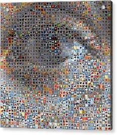 Eye 1  Acrylic Print by Boy Sees Hearts