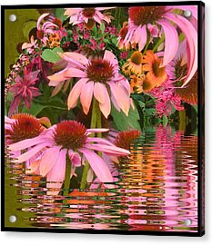 Eyecatching Cone Flowers Acrylic Print by Nancy Pauling