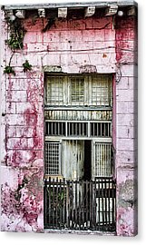 Faded Rouge Acrylic Print by Dawn Currie