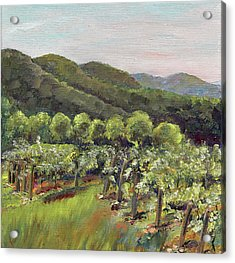 Fainting Goat Valley - Vineyards -  Jasper, Ga Acrylic Print by Jan Dappen