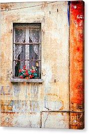 Fake Flowers On Window Acrylic Print by Silvia Ganora