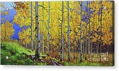 Fall Aspen Hill  Acrylic Print by Gary Kim