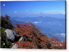 Fall Color In The Chilean Lake District Acrylic Print by James Brunker