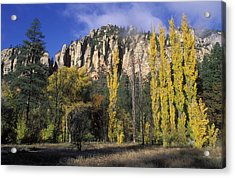 Fall Colors And Red Rocks Near Cave Acrylic Print by Rich Reid