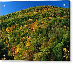 New England Acrylic Print featuring the photograph Fall Foliage Photography by Juergen Roth