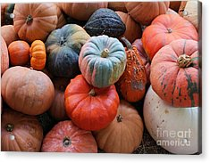 Fall Harvest Acrylic Print by Robert Wilder Jr