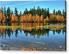Fall On Wapato Acrylic Print by Tim Coleman