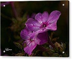 Fall Rain Acrylic Print by Jeff Swanson