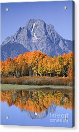 Fall Reflection At Oxbow Bend Acrylic Print by Sandra Bronstein