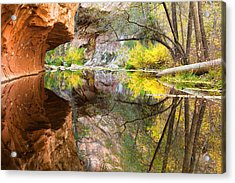 Fall Reflections Acrylic Print by Carl Amoth