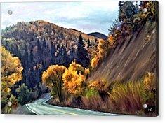 Fall Road Acrylic Print by Susan Kinney