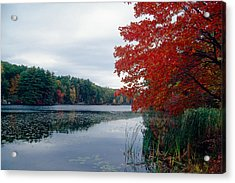 Fall Scenic Little Long Pond Harriman State Park New Acrylic Print by George Oze