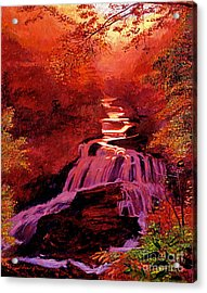 Falls Of Fire Acrylic Print by David Lloyd Glover