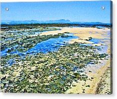 False Bay Low Tide Acrylic Print by Jan Hattingh