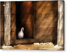 Farm - Duck - Welcome To My Home  Acrylic Print by Mike Savad