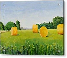 Farm Bales Acrylic Print by Gloria Cigolini-DePietro
