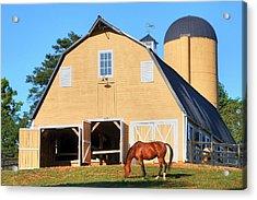 Farm Acrylic Print by Mitch Cat