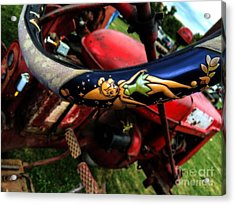 Farming With Tinker Bell  Acrylic Print by Steven  Digman