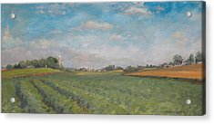 Farms And Fields Acrylic Print by Sandra Quintus