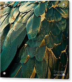 Feather Glitter Teal And Gold Acrylic Print by Mindy Sommers