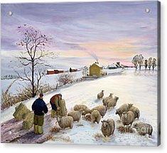 Feeding Sheep In Winter Acrylic Print by Margaret Loxton