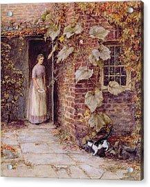 Feeding The Kitten Acrylic Print by Helen Allingham