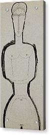 Female Nude Acrylic Print by Amedeo Modigliani