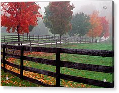 Fenceline And Wet Road, Autumn Color Acrylic Print by Panoramic Images