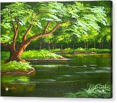 Fern  Pond Acrylic Print by Shasta Eone