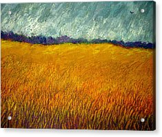 Field At Noon Acrylic Print by Kent Whitaker