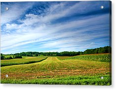Field Of Dreams Two Acrylic Print by Steven Ainsworth