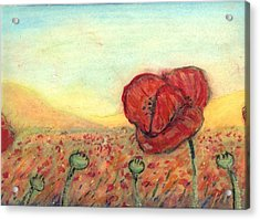 Field Poppies Acrylic Print by Robert Wolverton Jr